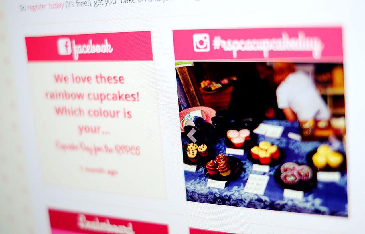 RSPCA Cupcake Day website design